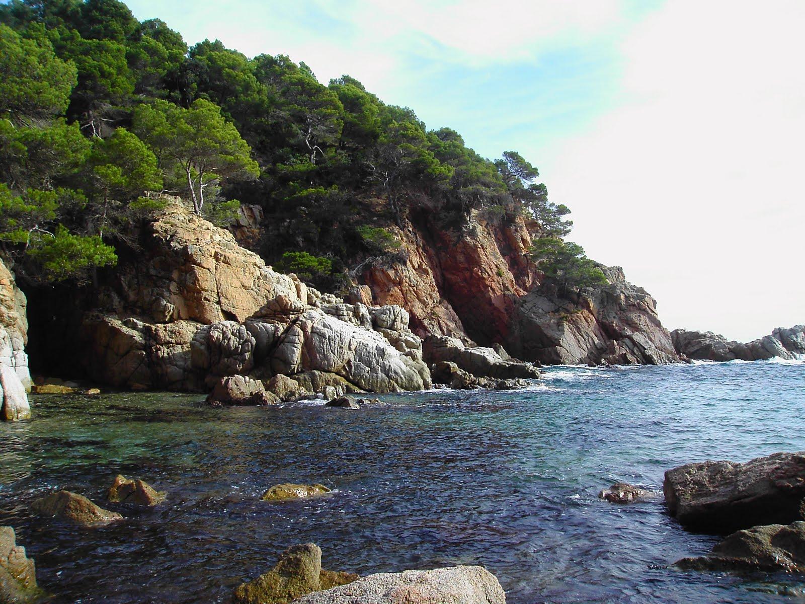 La CUP critica l'aprovació de la construcció d'un hotel a Cala Morisca de Tossa de Mar